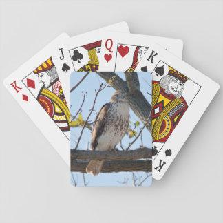 Rot angebundener Falke im Flug Spielkarten