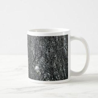 Rot angebundener Falke in vollem Winter Molt Kaffeetasse