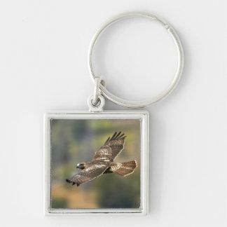 Rot-angebundener Falke Schlüsselanhänger