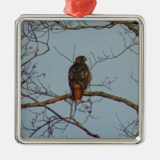 Rot angebundener Falke Silbernes Ornament