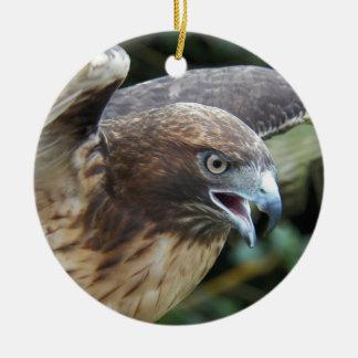 Rot-angebundenes Falke-Foto Keramik Ornament
