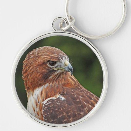 Rot-angebundenes Falke keychain