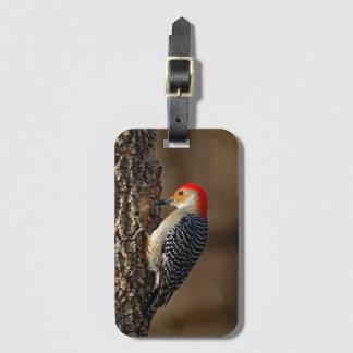 Rot-Aufgeblähter Specht auf einem Baum Gepäckanhänger