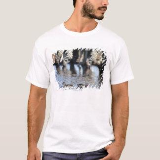 Rot-berechnete aquamarine (Anekdoten T-Shirt