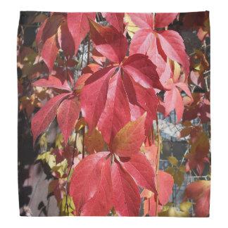 Rot-Blätter Kopftuch