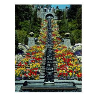 Rot im Park, Mainau Blumen Postkarte