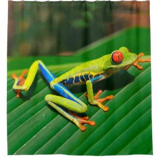 Rot-mit Augen Frosch Baum des tropischen Duschvorhang