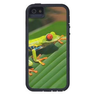 Rot-mit Augen Frosch Baum des tropischen iPhone 5 Hülle