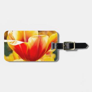 Rot mit gelber Tulpe auf dem Blumengebiet Gepäckanhänger