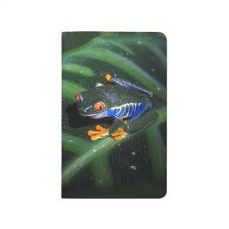 Rot mustert Frosch auf Blatt Taschennotizbuch