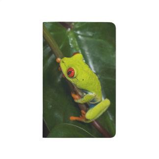 Rot mustert Frosch auf Stamm Taschennotizbuch