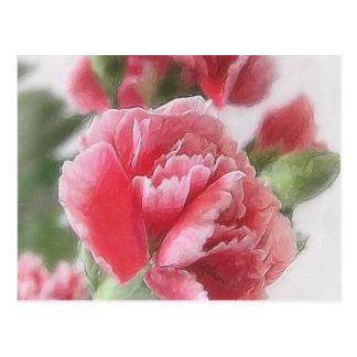Rot-Rosa Gartennelken 1 Painterly Postkarte