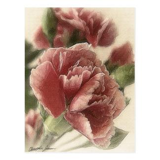Rot-Rosa Gartennelken 1 rustikal Postkarte