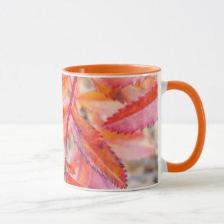 Rot u. Orange verlässt Tasse - Banken von Walden