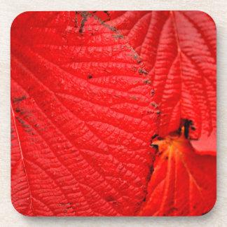 Rot verlässt   Folhas vermelhas Untersetzer