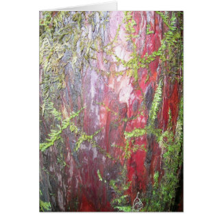 Rote Barke Karte