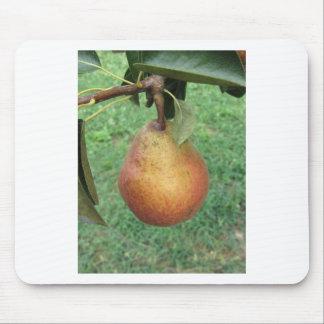 Rote Birne des Singles, die am Baum hängt Mauspads