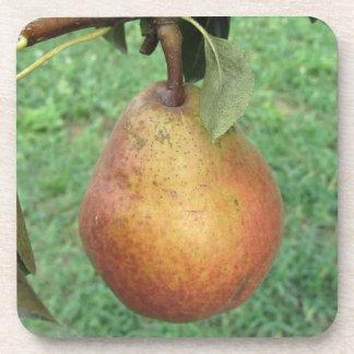Rote Birne des Singles, die am Baum hängt Untersetzer