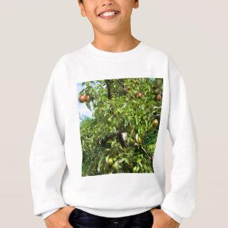 Rote Birnen auf Baumasten Sweatshirt