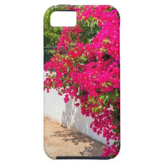 Rote Bougainville-Blumen, die auf weißem wall.JP Schutzhülle Fürs iPhone 5