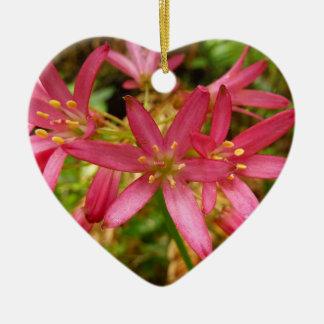 Rote Clintonia-Blumen am Rotholz-Nationalpark Keramik Ornament