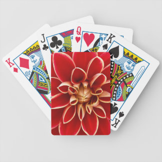 Rote Dahlie Bicycle Spielkarten