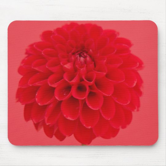 rote Dahlie Mousepads