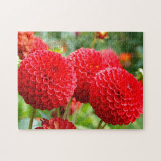 Rote Dahlien im Sommer Puzzle
