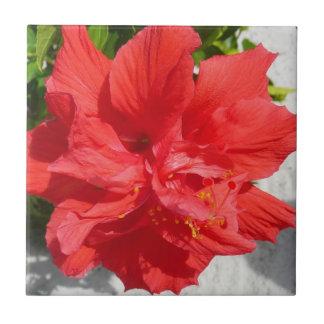 Rote doppelte Hibiskus-Blume Keramikfliese