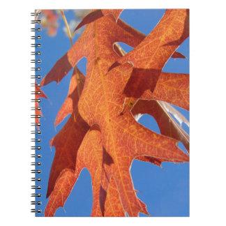 Rote Eichen-Blätter Notizblock