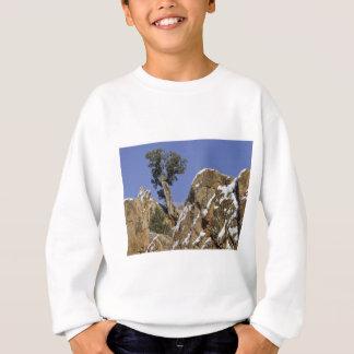 Rote Felsen-Schlucht 7 Sweatshirt