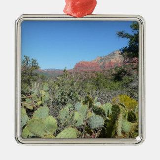 Rote Felsen und Kakteen I Silbernes Ornament