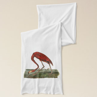 Rote Flamingo-Illustration Schal