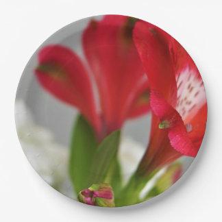 Rote Freesias, rote Blumen, Pappteller
