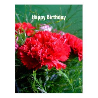 Rote Gartennelken-alles- Gute zum Geburtstagpostka Postkarten