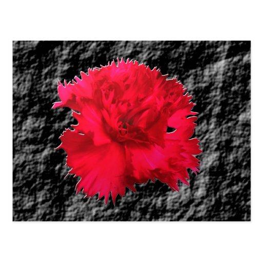 Rote Gartennelken-Blumenphantasie-Postkarte