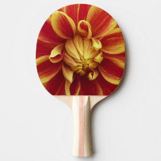 Rote gelbe Dahlie-Blume Tischtennis Schläger