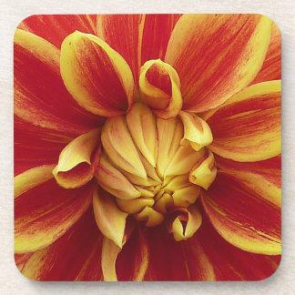 Rote gelbe Dahlie-Blume Untersetzer