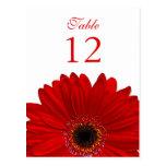 Rote Gerbera-Gänseblümchen-Tischnummer-Karte flach Postkarte