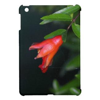 Rote Granatapfel-Blume (Punica granatum) auf einem iPad Mini Hülle