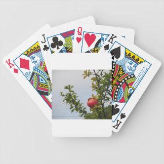 Rote Granatapfelfrucht des Singles auf dem Baum im Bicycle Spielkarten
