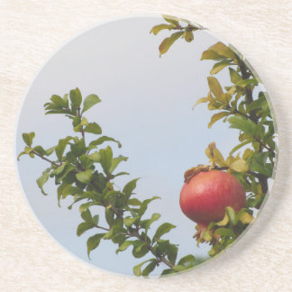 Rote Granatapfelfrucht des Singles auf dem Baum im Sandstein Untersetzer