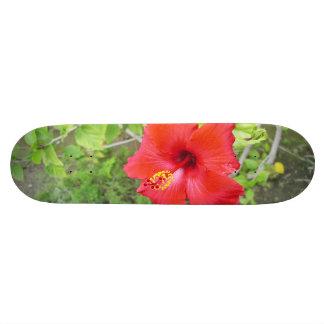 Rote Hibiskus-Gelbschande Individuelles Skateboard