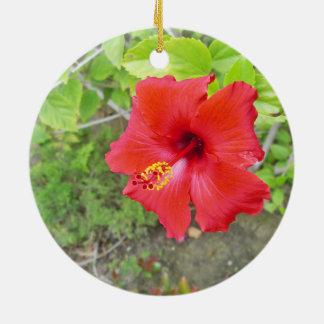 Rote Hibiskus-Gelbschande Keramik Ornament