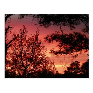 Rote Himmel-Sonnenuntergang-Postkarte Postkarte