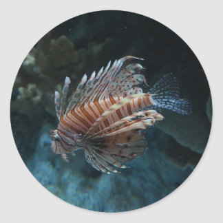 Rote Lionfish-Aufkleber Runder Aufkleber