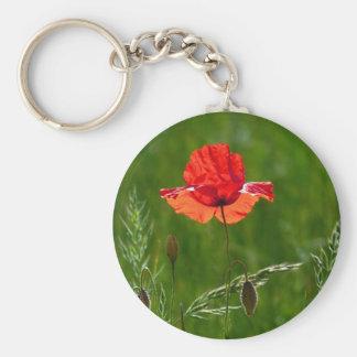 Rote Mohnblume im Sommer Schlüsselanhänger