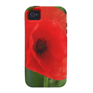 Rote Mohnblume Vibe iPhone 4 Case