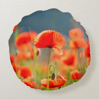 Rote Mohnblumen-Mohnblumen-Blumen-blauer Himmel Rundes Kissen