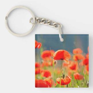 Rote Mohnblumen-Mohnblumen-Blumen-blauer Himmel Schlüsselanhänger